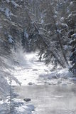 Picturesque river in Winter. Scenic view of picturesque stream or river in snow covered forest Royalty Free Stock Image