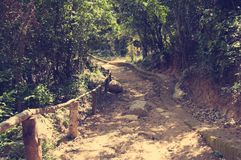 A picturesque road, running through the mountainous terrain in the jungle of Vietnam. With toning. Stock Images