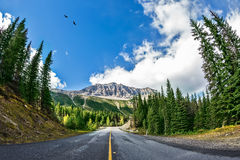 The picturesque road in Yoho National Park Stock Photography