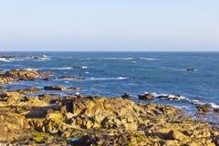 Rocky beach of Atlantic Ocean in Matosinhos, Porto, Portugal stock images