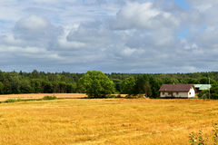 Picturesque rural landscape Royalty Free Stock Photography