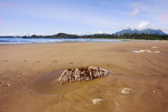 Picturesque sandy dunes of island Vancouver Stock Photography