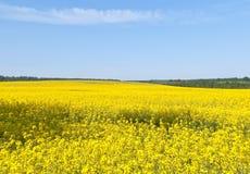 Picturesque Scenery Stock Photo