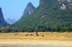 Picturesque scenery on the Li River, Guilin Royalty Free Stock Photo