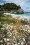 Picturesque sea landscape with flowers in the foreground, Pelion Stock Image