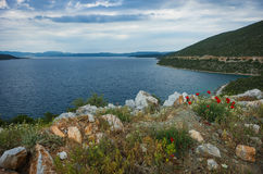 Picturesque sea landscape with flowers in the foreground, Pelion Stock Photos