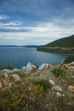 Picturesque sea landscape with flowers in the foreground, Pelion Royalty Free Stock Photos
