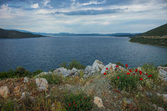 Picturesque sea landscape with flowers in the foreground, Pelion Royalty Free Stock Photography
