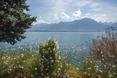 Picturesque shores of Lake Geneva, Switzerland Stock Images