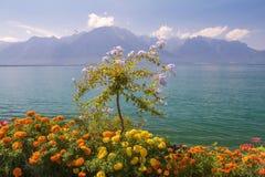 Picturesque shores of Lake Geneva, Switzerland Royalty Free Stock Images