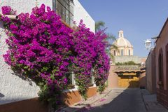 Picturesque street and cupola of the church of tequisquiapan. Street with purple bougainvilleas, in the background cupola of the Temple of Tequisquipan in the Royalty Free Stock Image