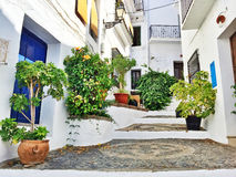 Picturesque street decorated with plants, in Andalusia Stock Photography
