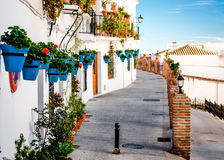 Picturesque street of Mijas Stock Images