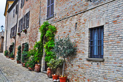 Picturesque street in Mondavio Royalty Free Stock Images
