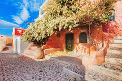Picturesque street view of Oia on the island Santorini, Greece. Picturesque colorful street view of Old Town Oia on the island Santorini, Greece stock images