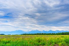 Picturesque summer landscape of mountain range with peaks, valley with green grass, grove and cloudy sky. Natural background with. Space for text. Eastern Sayan stock photo
