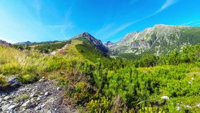 Picturesque summer view of High Tatras mountains, Slovakia stock video footage