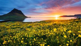 The picturesque sunset over landscapes and waterfalls. Kirkjufell mountain,Iceland stock images