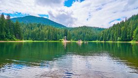 Synevyr Lake in Carpathian mountains, Ukraine. The picturesque Synevyr Lake is surrounded by coniferous forests and Carpathian mountains, the clear surface stock footage