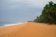 Picturesque  tropical beach. Royalty Free Stock Photography