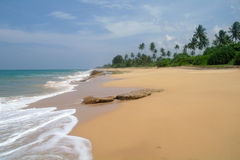Picturesque  tropical beach. Royalty Free Stock Images