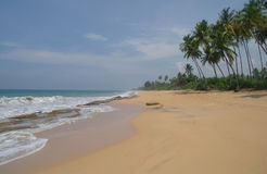 Picturesque  tropical beach. Sri Lanka Stock Images