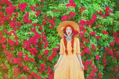 Picturesque Valentines day background. Braided girl in stylish polka dodts yellow dress on beautiful summer roses garden. Redhead. Comely model with plait on royalty free stock images
