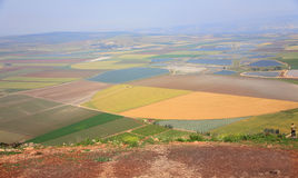 Picturesque valley in the Galilee. Stock Image