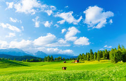 Picturesque view. Beautiful landscape of valley in Alpine mountains, small houses in Seefeld, rural scene, majestic picturesque view in sunny day stock images