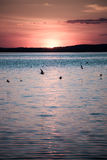 Picturesque view of a beautiful sunset over a river. Royalty Free Stock Photography