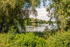 Picturesque view between branches of willow trees to the reflect Stock Images
