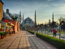 Picturesque view in Istanbul. Beautiful view with the blue muse Stock Image