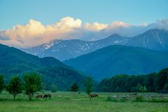 A picturesque view to a mountain area with some greeness and animals.  Royalty Free Stock Photography