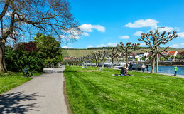 Picturesque view of Wuerzburg in spring, Bavaria, Germany. Spring landscape. On the Main River promenade in Wuerzburg, Germany Royalty Free Stock Photo
