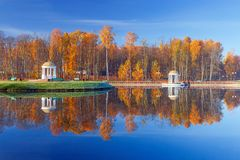 Yellow leaves in an autumn park. Picturesque view of the yellow autumn park and the blue lake in Europe Stock Images