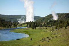 A picturesque view of Yellowstone park in the summertime royalty free stock image