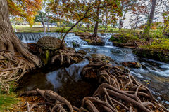 Picturesque Waterfall with Cypress Tree Roots. Stock Image