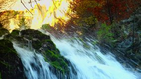 Picturesque waterfall in the mountains, pure fresh water waterfall in autumn forest; ULTRA HD 4K, real time, zoom stock video footage