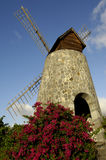Picturesque windmill in the 3 Rivieres distillery park in Martin Stock Photo
