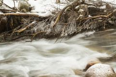 Picturesque winter landscape of frozen trees and river,Almaty Royalty Free Stock Photography