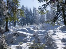 Picturesque winter landscapes of mountain landscapes in sunny light stock images