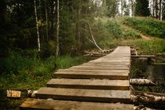 A picturesque wooden bridge of planks with and birch bars. Misty forest stock image