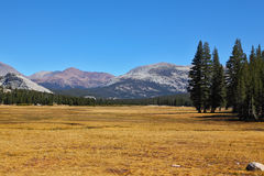 Picturesque Yosemite Park in the autumn Royalty Free Stock Image