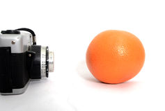 Picturing citrus. Picture  of a Picturing citrus Royalty Free Stock Photo