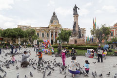 Pidgeon feeding on Plaza Murillo in La Paz, Bolivia Royalty Free Stock Photography