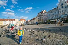 Pidgeons мальчика подавая в старом городке в Bydgoszcz Стоковая Фотография