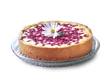 Pie with cottage cheese and redcurrant Royalty Free Stock Photography