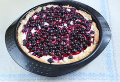 Pie with curd and currant Stock Photography