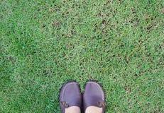 Pie de la mujer en zapatos marrones en hierba verde Imágenes de archivo libres de regalías