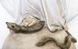 Pie de la Virgen María Imágenes de archivo libres de regalías
